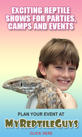 EXCITING REPTILE ADVENTURES